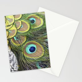 Peacock feathers pattern Stationery Cards