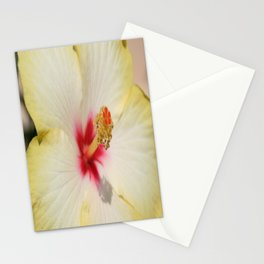 Beautiful Yellow Hibiscus Flower  Stationery Cards
