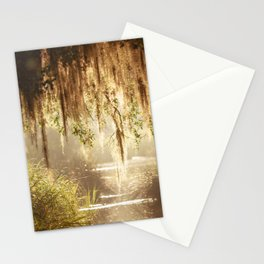 Lowcountry Swamp Stationery Cards