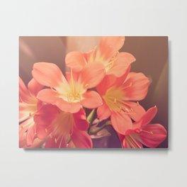 Pastel Pink Flowers Metal Print