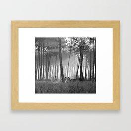 lumineuse brume Framed Art Print
