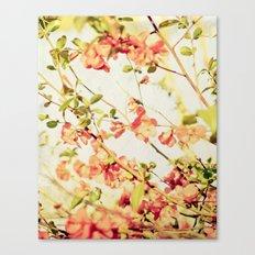 Las Flores  Canvas Print