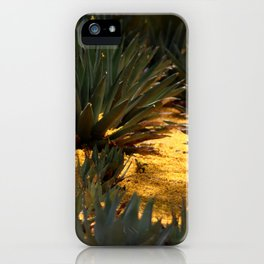 Palo Brea Blossomes Covering Agave Gardens iPhone Case