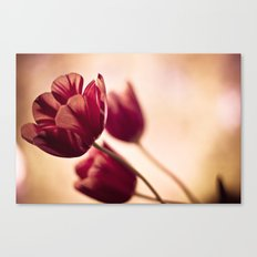 blown in the wind Canvas Print