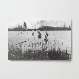 December at the Lake Metal Print