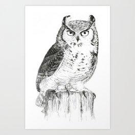 My great horned owl: Nuit Art Print