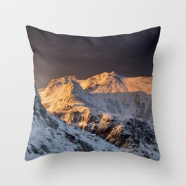 Morning shades Throw Pillow
