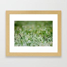 Icy Grass Framed Art Print