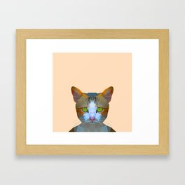 Cat new with background Framed Art Print