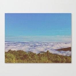 Above Cloud • Appalachian Trail Canvas Print