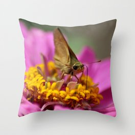 Colorful Skipper Butterfly Throw Pillow