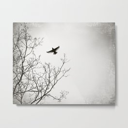 Black and White Bird Flying Nature Photography, Grey Tree Birds, Gray Trees Branches, Wings Sky Metal Print