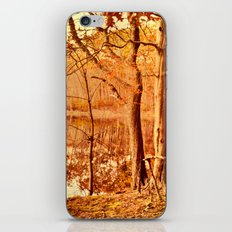 Tuesday led to the water's edge iPhone & iPod Skin