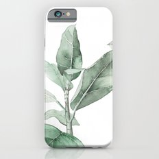 Ficus Branch Slim Case iPhone 6
