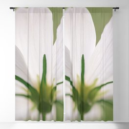 Bloom When You Want - Flower Photography Blackout Curtain