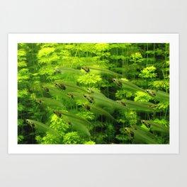 Green Fishes Art Print