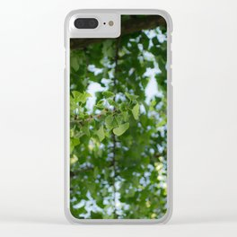 Ginkgo biloba tree in the city Clear iPhone Case