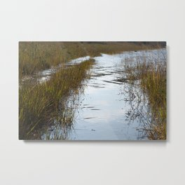 Silver reflections Metal Print