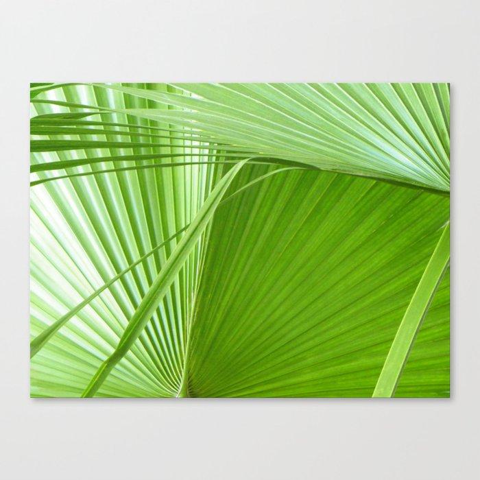 Palm Leaves Tropical Wall Art Beach Cottage Decor Coastal Canvas Print