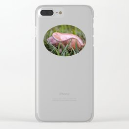 Beautiful fungi and grass Clear iPhone Case