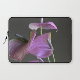 pink anthurium in the vase Laptop Sleeve