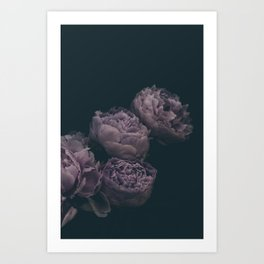 Dramatic Bunch of Peonies | Modern Floral Photography | Nature Art Print