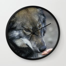 Friendly Wolf Wall Clock