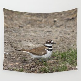 Concerned Killdeer Wall Tapestry