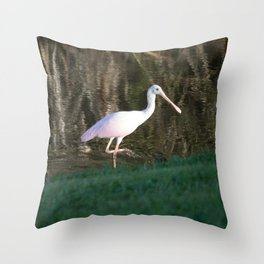 Rosy Spoonbill Throw Pillow