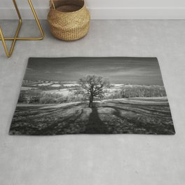 Lone tree over the East Somerset Railway Rug