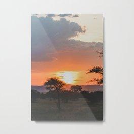Serengeti National Park, Tanzania VIII Metal Print