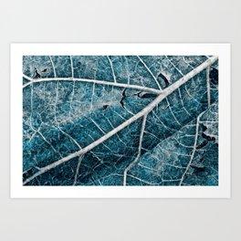 Frozen Winter Leaf Art Print