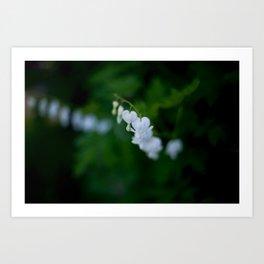 Cinderella Flowers Art Print