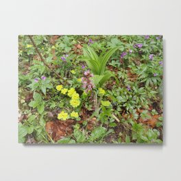 Spring forest flowers Metal Print
