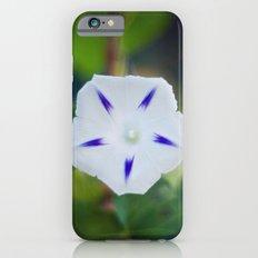Star iPhone 6s Slim Case
