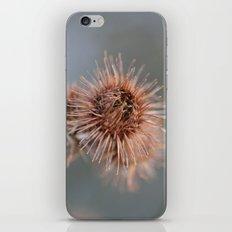 The Piri iPhone & iPod Skin