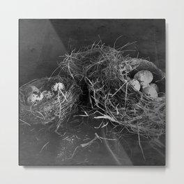 Three Nests Metal Print