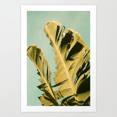 Late Morning Art Print