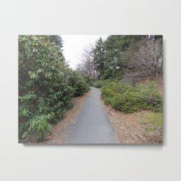 The Path Less Taken Metal Print