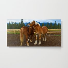 Horses in Jasper National Park, Canada Metal Print