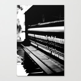 Piano Guts Canvas Print