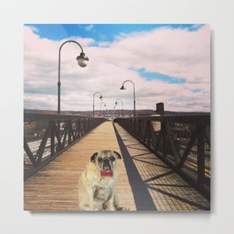 Pug on a Bridge Metal Print
