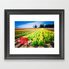 Bench and Tulips, Woodburn, Oregon Framed Art Print