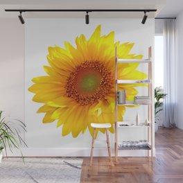 Sunflower 11 Wall Mural