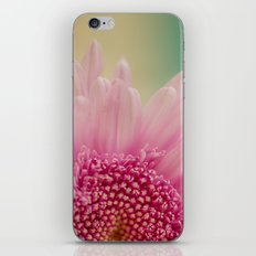 Pink bursts, Floral Macro Photography iPhone & iPod Skin