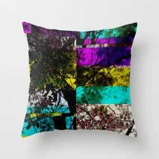 Colorbar Throw Pillow