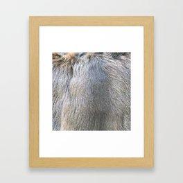 Rabbit Fur Framed Art Print