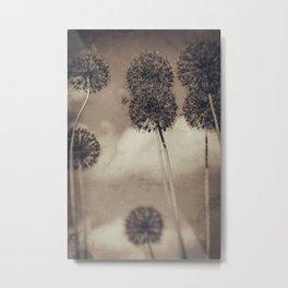 Allium Dance Metal Print