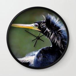 American Darter Wall Clock