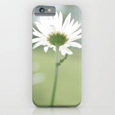 Boxed faith Daisy iPhone 6s Slim Case